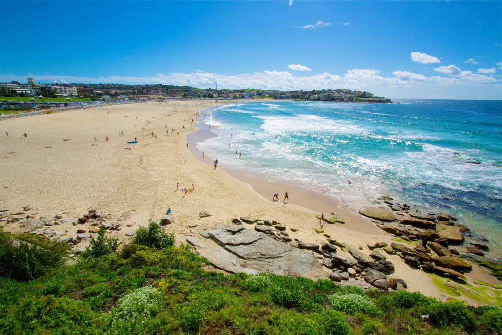 View overlooking Bondi beach and lush vegetation