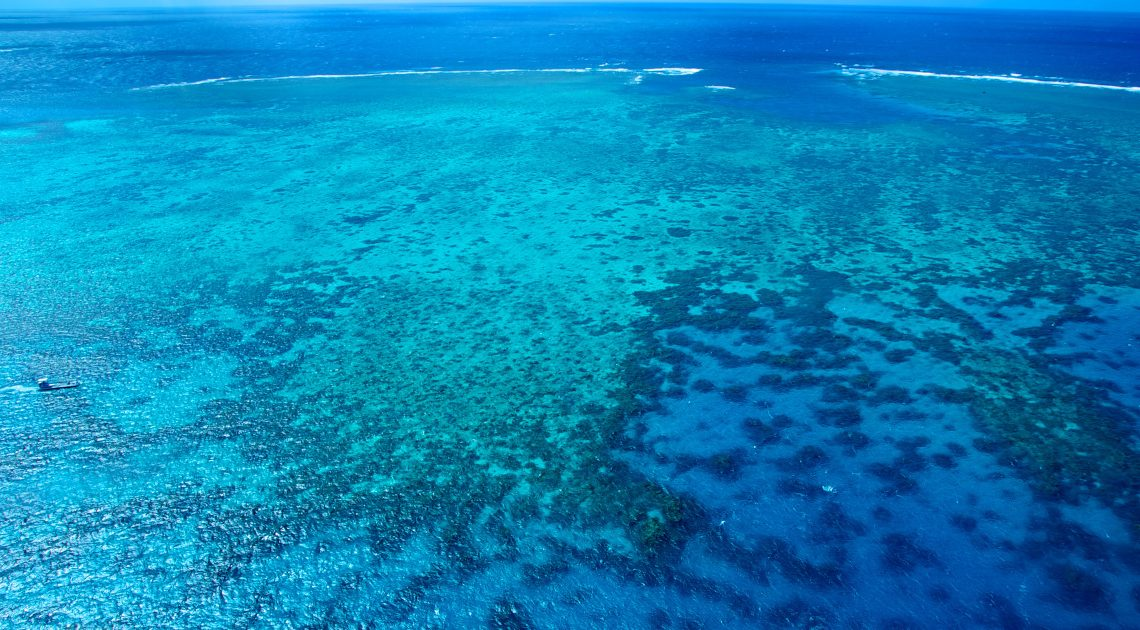 featured image great barrier reef